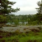 Fin udsigt fra hytten