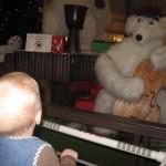 Karen kigger fascineret på isbjørnene