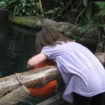 At kigge dybt i vandet