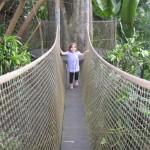 Hængebro