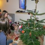 Juletræspyntning lillejuleaften