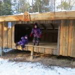 Shelters i skoven