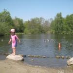 Vand i Doktorparken