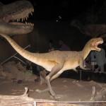 De første dinoer