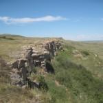 Hvor de drev bisonerne ud over