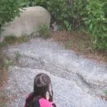 Ellen fandt en kanin (en mountain cottontail)
