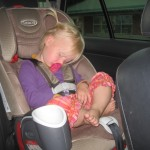 Karen sov fra at køre ind i USA