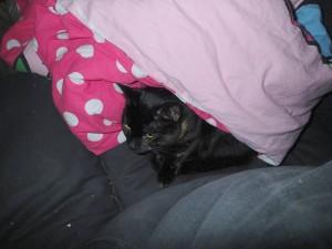 Anyanka er sød når hun ligger halt under og udenfor min dyne